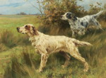 1304457067_two-english-setters-on-point