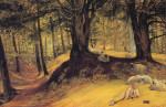 Redgrave_Parkhurst_Woods-large