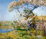 apple-trees-in-bloom-old-lyme