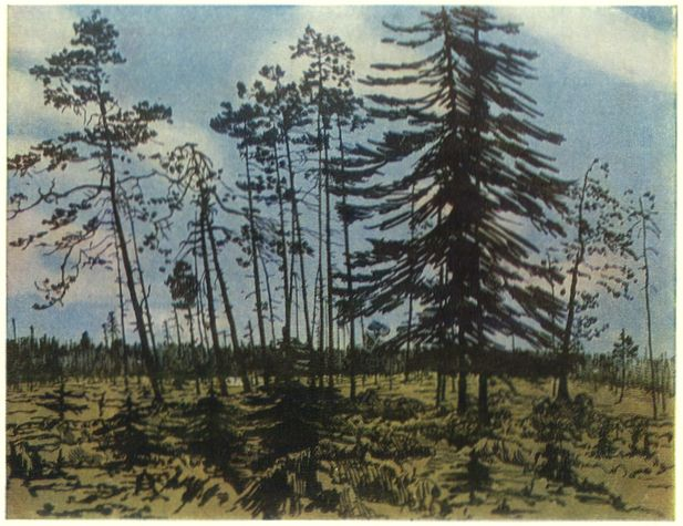finland-with-a-blue-sky-1910.jpg