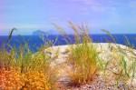 pinturas-hiperrealistas-al-oleo-de-paisajes-de-naturaleza