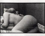 union-libre-poem-by-andr-breton-embossed-in-braille-on-a-photograph-2004_jpg!xlMedium