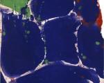 untitled-sf55-003-1955_jpg!xlMedium